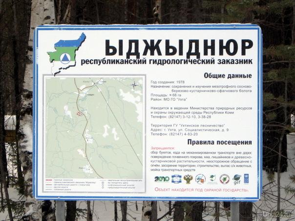 2010г. Информационный щит ухтинского лесничества, расположенный между селом Кэмдин и деревней Лайково. Природа Ухты и Коми Ухта