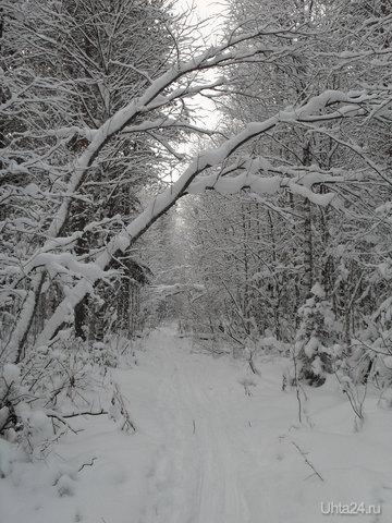 Декабрьская 2010г. лыжня (начало - в конце улицы Тиманской).   Ухта