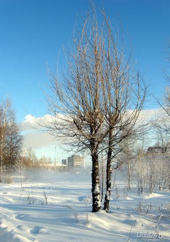 2011г. В парке. Природа Ухты и Коми Ухта