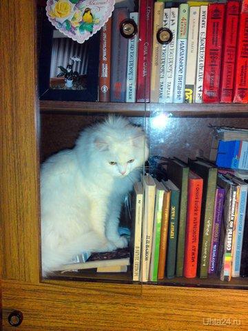 В личной библиотеке Питомцы Ухта
