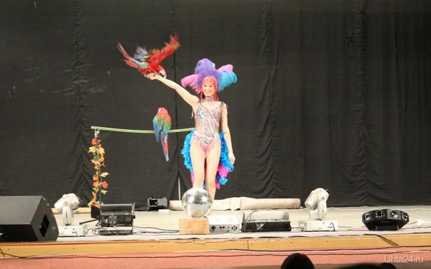 Омский цирк Мероприятия Ухта