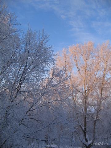 февраль 2011 Природа Ухты и Коми Ухта