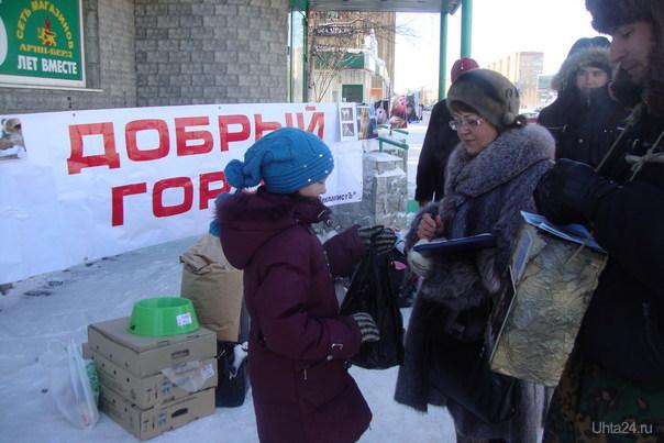 """Сбор помощи бездомным животным - Акция группы """"Добрый город"""" Мероприятия Ухта"""