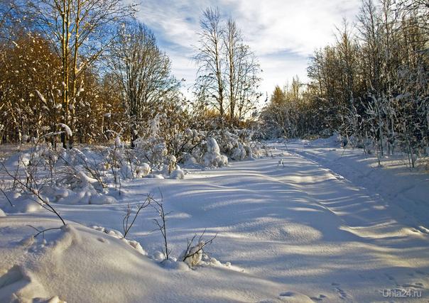 Зима. Природа Ухты и Коми Ухта