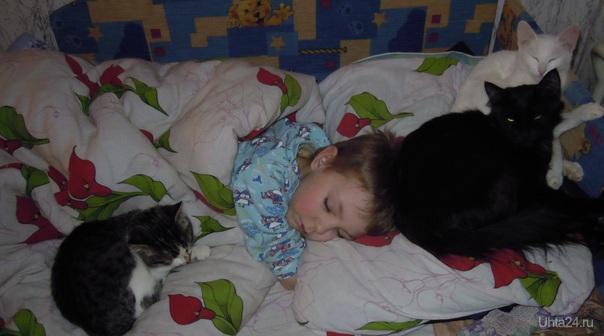 Спит ребенок под надежной охраной Питомцы Ухта