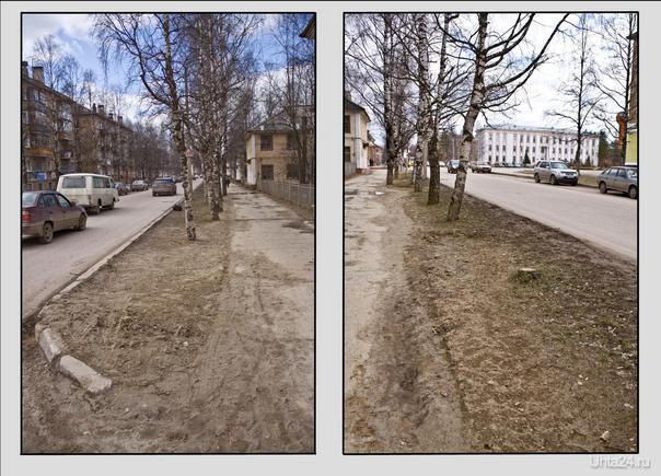 вот так выглядят газоны ул. Первомайской. Осенью 2009г. Горзеленхоз  заменил на них грунт, посадил травку. Это обошлось городу что то около полмиллиона. Прошло две зимы и что мы видим?  Улицы города Ухта