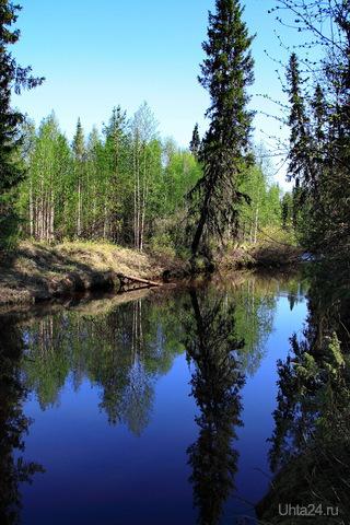 Наклонилась в зеркало посмотреться))) Природа Ухты и Коми Ухта