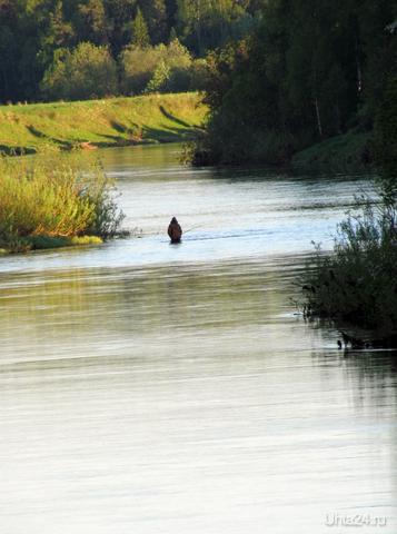 На реке. Природа Ухты и Коми Ухта