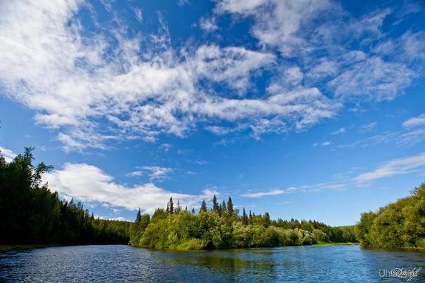 Место впадение реки Ухты в Тобысь. Тобысь слева, Ухта справа.  Ухта