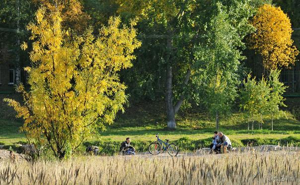 Последний солнечный денёчек.  10.09.11. Природа Ухты и Коми Ухта