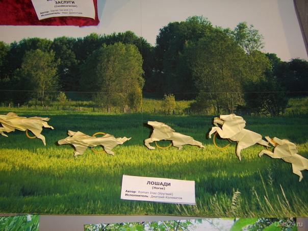 На выставке в музее УТГУ.Оригами  Ухта