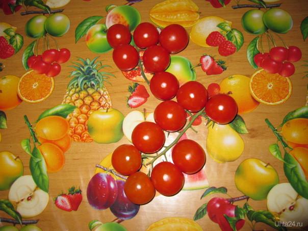 Красные огоньки - это маленькие помидорки черри Творчество, хобби Ухта
