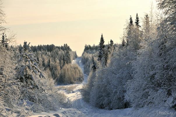 Зима-2 Природа Ухты и Коми Ухта