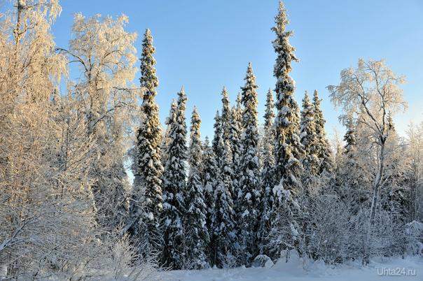 Зима-3 Природа Ухты и Коми Ухта