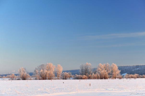 Зима-5 Природа Ухты и Коми Ухта