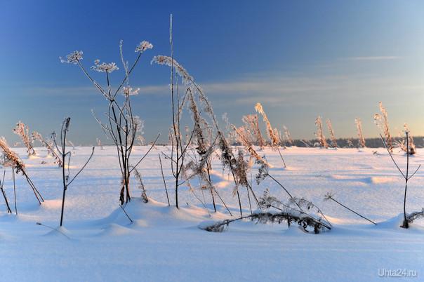 Зима-6 Природа Ухты и Коми Ухта