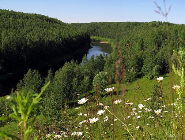 2012г. Река Седью. Природа Ухты и Коми Ухта