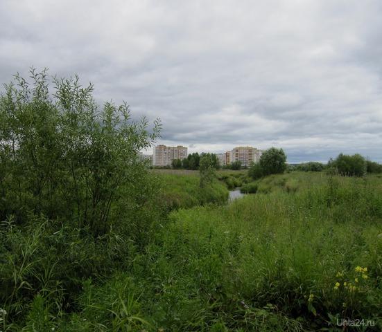 В окрестностях города Ухты. Природа Ухты и Коми Ухта