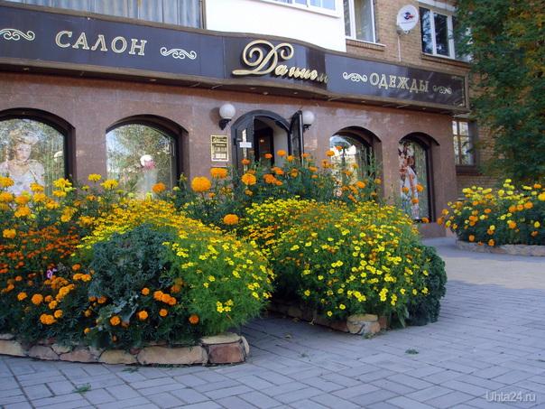 Даниэль Магазин