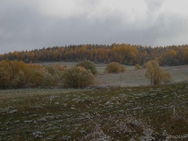 Осень 2008 года. Природа Ухты и Коми Ухта