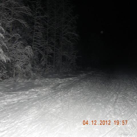 ночь в лесу Природа Ухты и Коми Ухта
