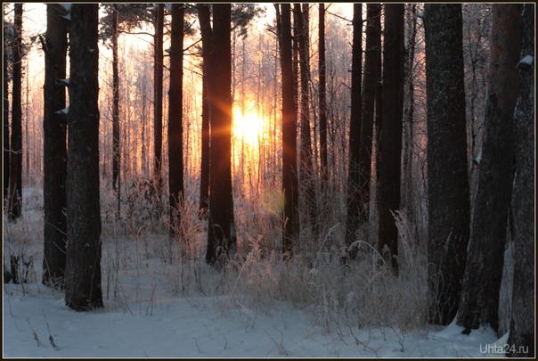 последние лучи солнца в 14 часов дня! через 15 минут - солнце зашло, и красота исчезла.... Природа Ухты и Коми Ухта