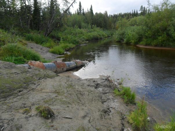 """нефтяная труба(лукойл) на реке """"Черная"""" в Усинске.рядом отдыхают люди и жарят шашлык. под водой метров 10 идет эта труба. Разное Ухта"""