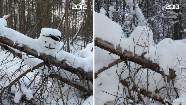 Лесной креатив с ежегодной периодичностью. Лыжня от ул. Сидорова. Природа Ухты и Коми Ухта