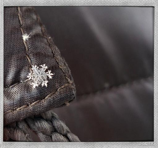 Снежинка)) Природа Ухты и Коми Ухта