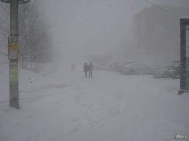 А снег идёт ... Природа Ухты и Коми Ухта
