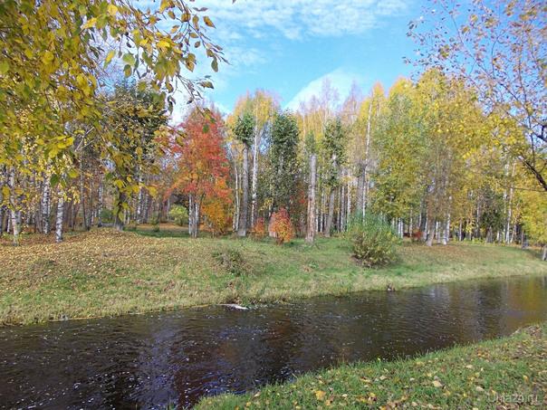 Чибью река, осень Разное Ухта