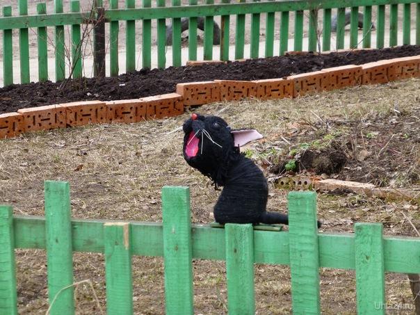 Кот на заборе:Ну, и когда наступит наконец весна?Когда я смогу погреться на солнышке? Хочу-у-у весну!!! Разное Ухта