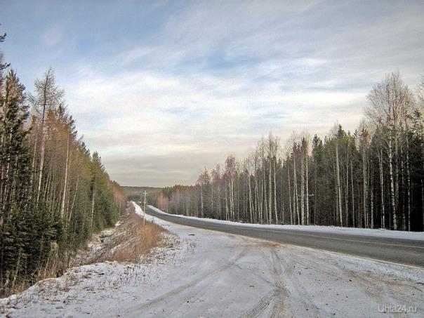 Дорога с Крохаля. 2008 г. Природа Ухты и Коми Ухта