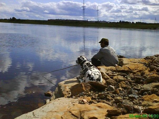 Поляна, июль 2009 г Природа Ухты и Коми Ухта