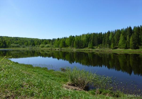 Река Ухта в районе поселка Шуда-Яг. Красота-а-а! Природа Ухты и Коми Ухта