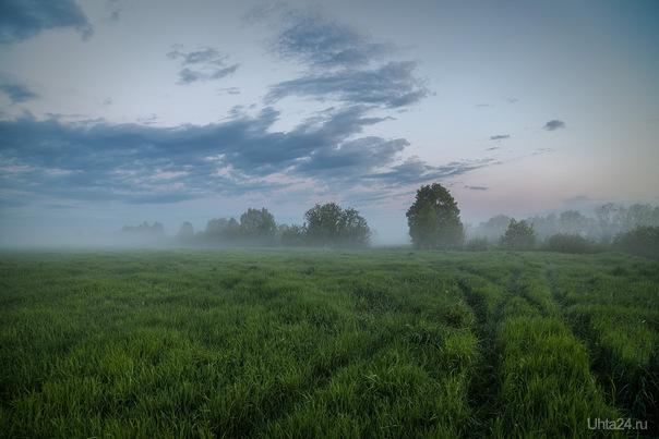 Туман. Природа Ухты и Коми Ухта