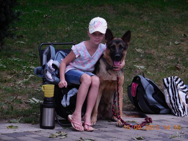 """Посетили благотворительный праздник """"Я и моя собака!"""" в Краснодаре. Питомцы Ухта"""