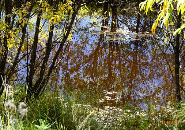 Осень. Природа Ухты и Коми Ухта