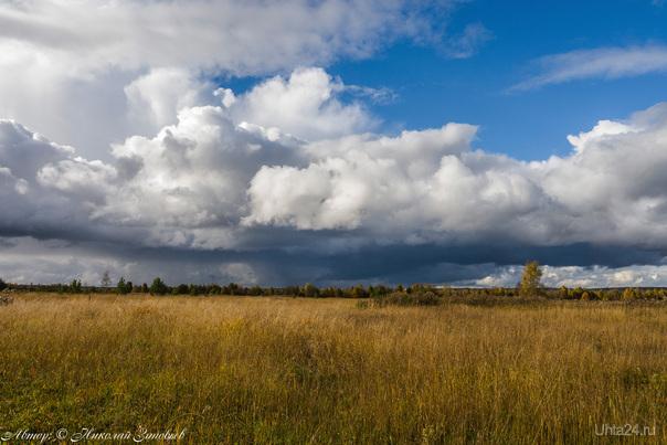 Осень в ухтинских полях. Природа Ухты и Коми Ухта
