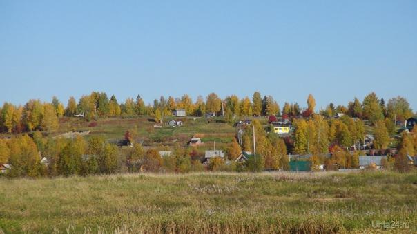 Осень. Земляничная поляна. Природа Ухты и Коми Ухта