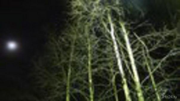 Ночь, улица, фонарь, аптека,  Бессмысленный и тусклый свет.  Живи еще хоть четверть века -  Все будет так. Исхода нет./Александр Блок/ Улицы города Ухта