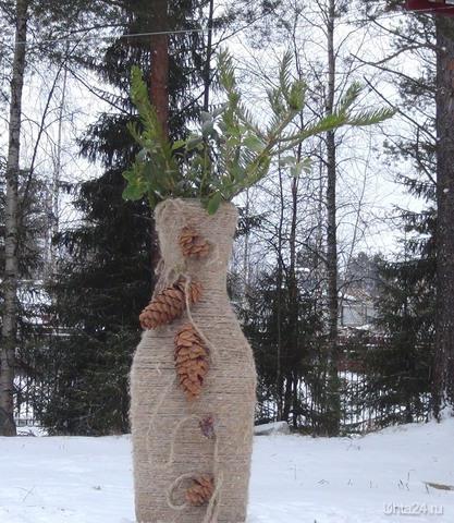 Зимний букет. Природа Ухты и Коми Ухта