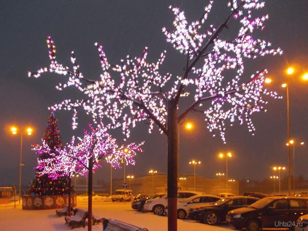 Украшения к Новому году возле торгового центра Ярмарка.Деревья самодельные из какой-то ерунды, труб и палок, но красиво.  Ухта