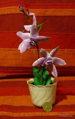 Пробую новый материал.Орхидея.  Ухта