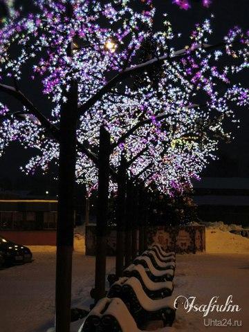 Посетил Ваш городок на Новый год. Гуляя как то вечером, дошел до  Ярмарки. Очень понравилась аллейка)) Разное Ухта