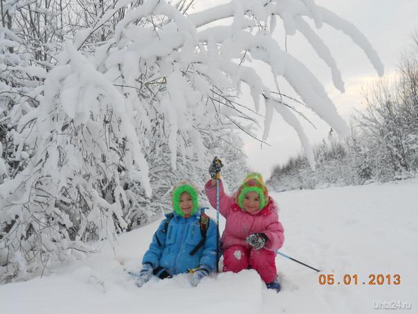 красота- в зимнем  лесу на лыжне Ярега Природа Ухты и Коми Ухта