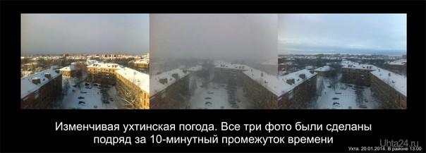 20.01.2014 13.00 Природа Ухты и Коми Ухта
