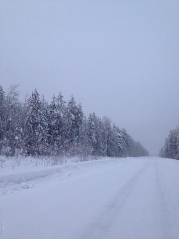 Морозным днем. -35 Природа Ухты и Коми Ухта