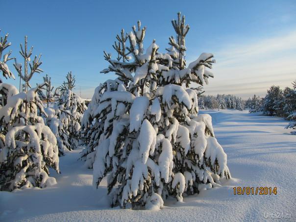 описание зимней фотографии Природа Ухты и Коми Ухта