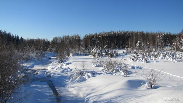 зима, февраль Природа Ухты и Коми Ухта